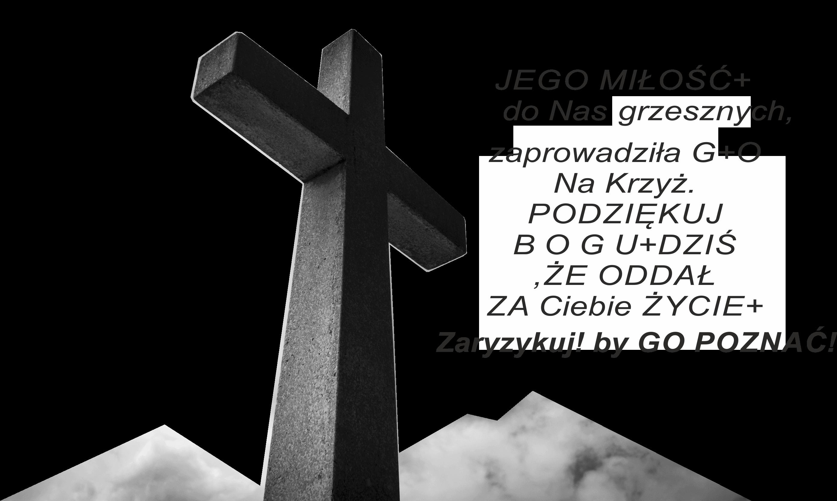 ŻCH-PL333